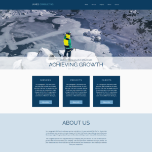 Consultant Consultancy Website