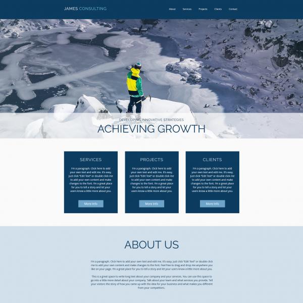 Consultant Consultancy Website